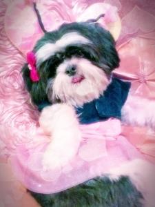 Lulu_VDay_GlamourHearts