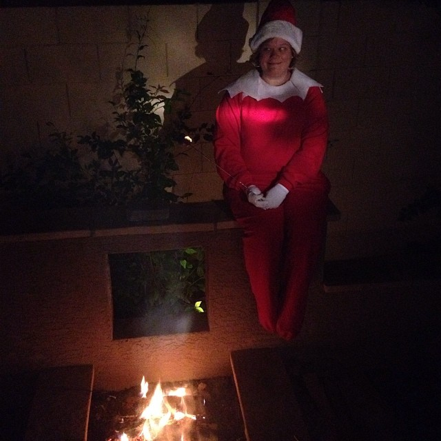 A Real Life Elf on the Shelf